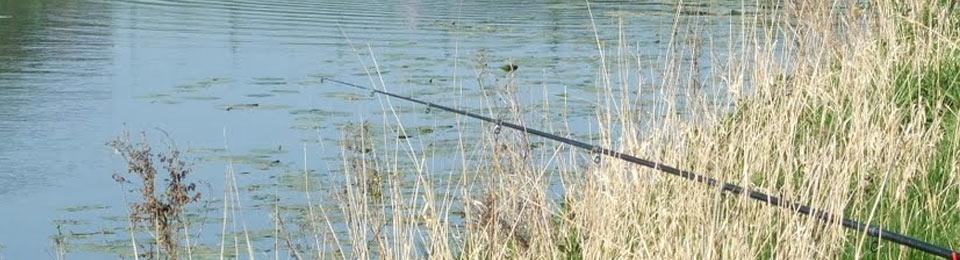 Der Motzener See - ein Anglerparadies!