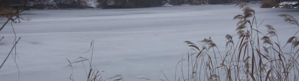 Winterlicher kleiner Tonsee